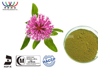 China Natural Isoflavones Red Clover Extract Trifolium Pratense Powder For Women Supplement supplier
