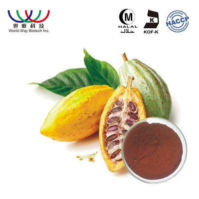 China Cocoa Seed Theobromine Pure Plant Extract 40% Polyphenol Dark Brown Powder supplier