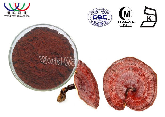 Anti Cancer Reishi Mushroom Extract 10% Polysaccharides