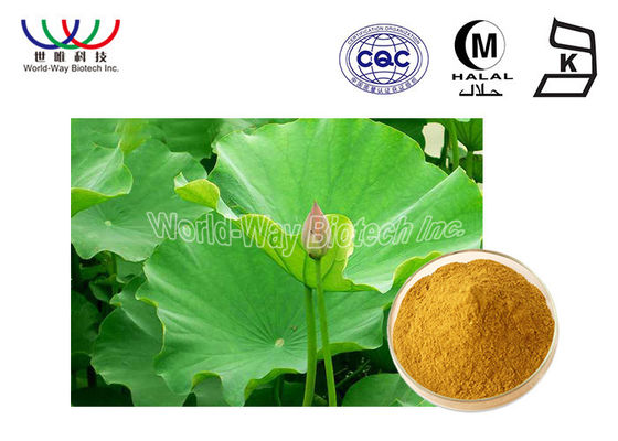 Health Care Lotus Herbal Products , Organic Herbal Extracts Powder Food Grade