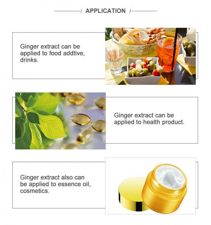 Anti Bacterial Zingiber Officinale Extract , Ginger Extract Powder For Weight Loss